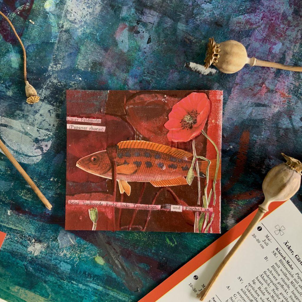 Mohnblumen  Collage ©muellerinart